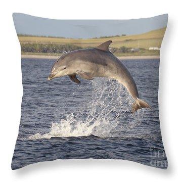 Young Bottlenose Dolphin - Scotland #13 Throw Pillow