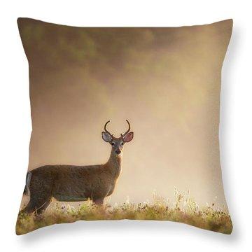Young Buck Throw Pillow