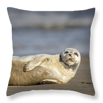 Young Common Seal Sleeping On The Beach Throw Pillow