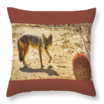 Young Coyote And Cactus Throw Pillow