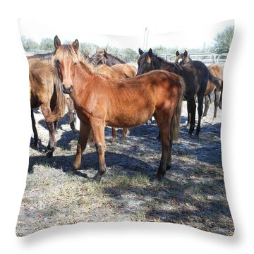 Throw Pillow featuring the photograph Young Cracker Horses by Kay Gilley