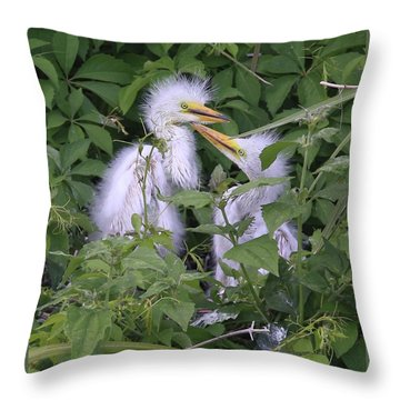 Young Egrets Throw Pillow