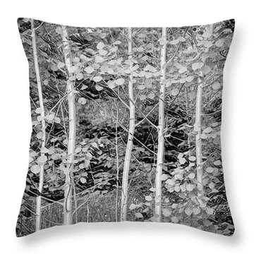 Throw Pillow featuring the photograph Young Forest by James BO Insogna