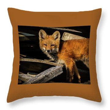 Young Fox In The Wood Throw Pillow
