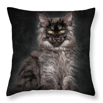 Young Gentleman Throw Pillow