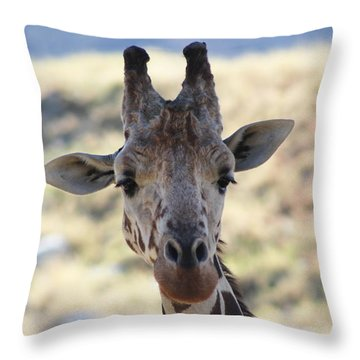 Young Giraffe Closeup Throw Pillow by Colleen Cornelius