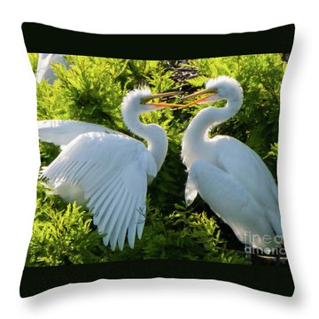 Young Great Egrets Playing Throw Pillow