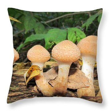 Young Honey Mushrooms Throw Pillow