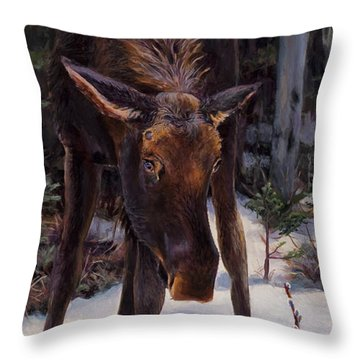 Young Moose And Pussy Willows Springtime In Alaska Wildlife Painting Throw Pillow