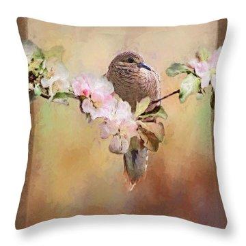 Young Morning Dove Throw Pillow