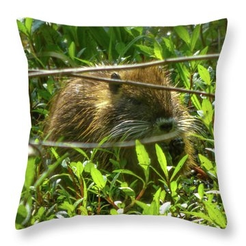 Young Nutria In Love Throw Pillow by Kimo Fernandez