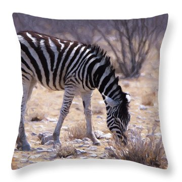 Young Plains Zebra Throw Pillow by Ernie Echols