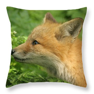 Throw Pillow featuring the photograph Young Red Fox In Profile by Doris Potter