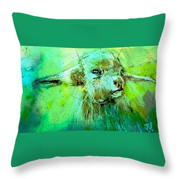 Young Sheep Throw Pillow by Jim Vance