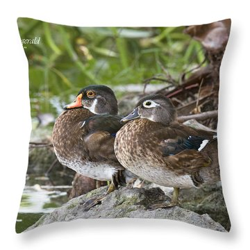 Young Wood Duck Pair Throw Pillow