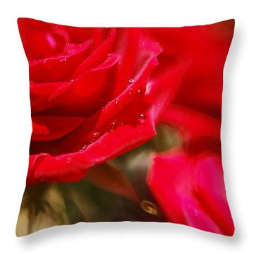 Your Love Spins Me 'round Throw Pillow by Beverly Stapleton