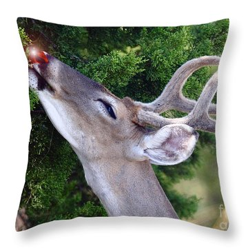 Your Nose So Bright Throw Pillow