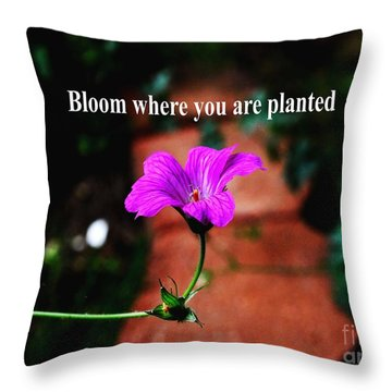 Your Station In Life Throw Pillow by Gary Wonning