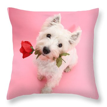 Your Valentine Every Day Throw Pillow