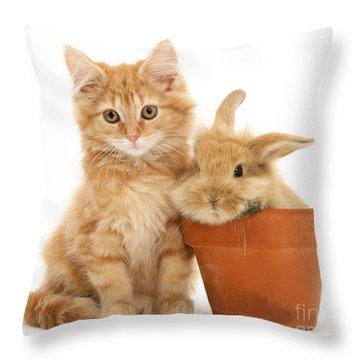 You're Potty Throw Pillow