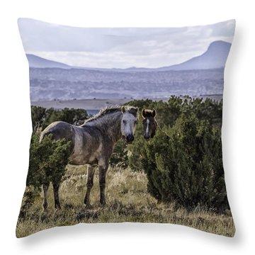 Your'e Safe Here Throw Pillow by Elizabeth Eldridge