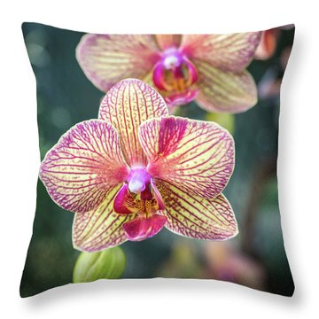 Throw Pillow featuring the photograph You're So Vain by Bill Pevlor