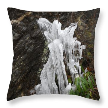 Throw Pillow featuring the photograph You've Got A Friend by Diannah Lynch