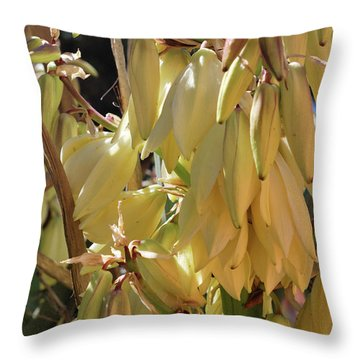 Yucca Bloom II Throw Pillow