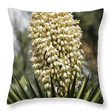 Throw Pillow featuring the photograph Yucca Flowers In Bloom  by Saija Lehtonen