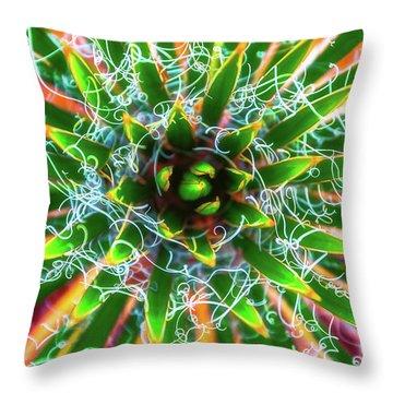 Yucca Sunrise Throw Pillow by Darren White