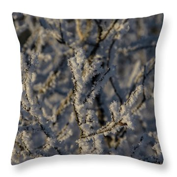 Throw Pillow featuring the photograph Yukon Snow Scene 3 by Phyllis Spoor