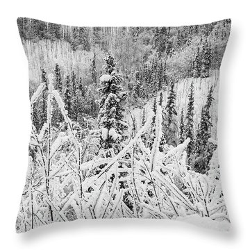 Throw Pillow featuring the photograph Yukon Snow Scene Black And White Contrast by Phyllis Spoor