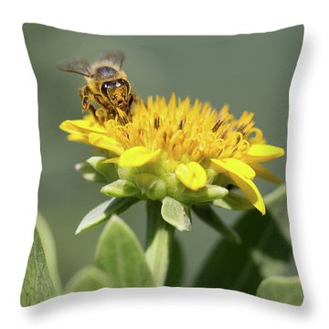 Yumm Pollen Throw Pillow by Christopher L Thomley