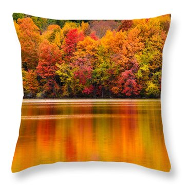 Yummy Autumn Colors Throw Pillow by Craig Szymanski