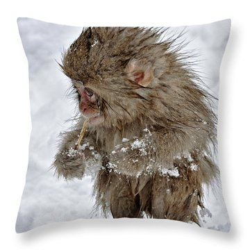 Yummy? Throw Pillow