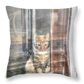 Yury Bashkin Don't Bother Come On In Throw Pillow