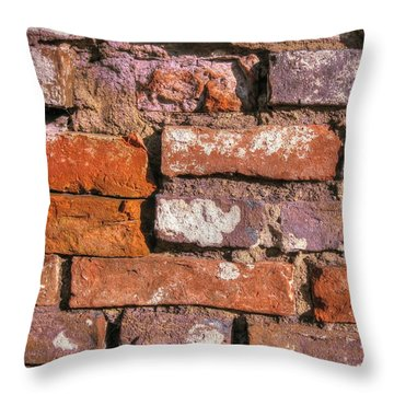 Yury Bashkin Old Wall Throw Pillow