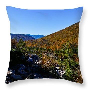 Zealand Notch Throw Pillow
