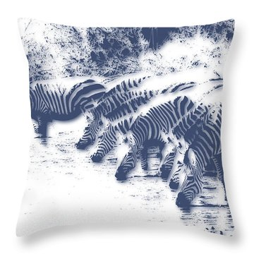 Zebra 3 Throw Pillow