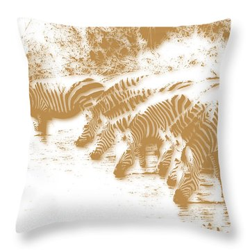 Zebra 6 Throw Pillow