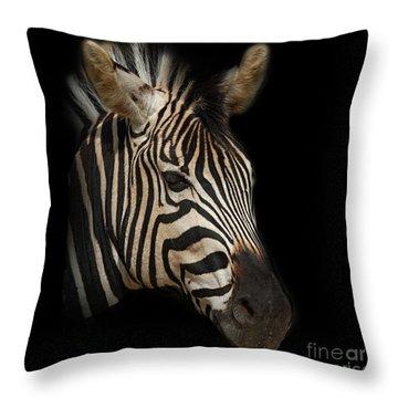 Zebra Throw Pillow by Barbara Dudzinska