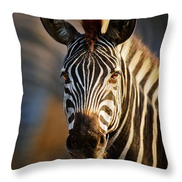 Zebra Close-up Portrait Throw Pillow
