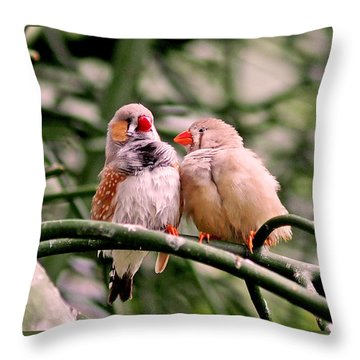 Throw Pillow featuring the photograph Zebra Finch Colloquy by Rona Black