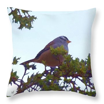 White Crowned Sparrow In Cedar Throw Pillow
