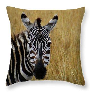 Zebra Half Shot Face On Throw Pillow
