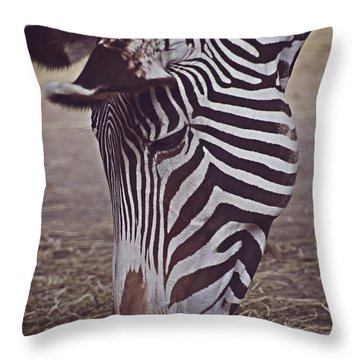 Zebra Head Throw Pillow