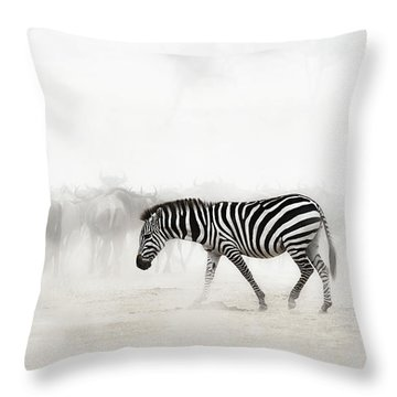 Zebra In Dust Of Africa Throw Pillow
