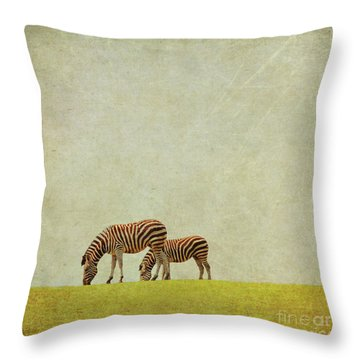 Zebra Throw Pillow by Lyn Randle