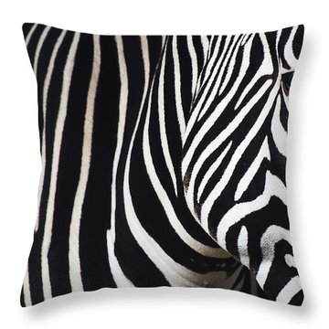 Zebra Close-up Throw Pillow
