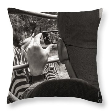 Throw Pillow featuring the photograph Zebra Modeling by Sherry Davis